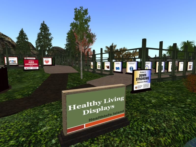 A great range of materials to explore at Health Info Island!
